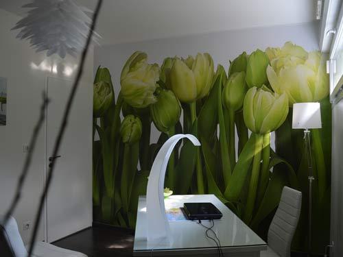 d coration bureau. Black Bedroom Furniture Sets. Home Design Ideas